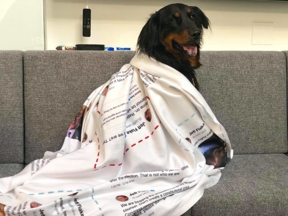 Dog on couch wrapped in a photo blanket