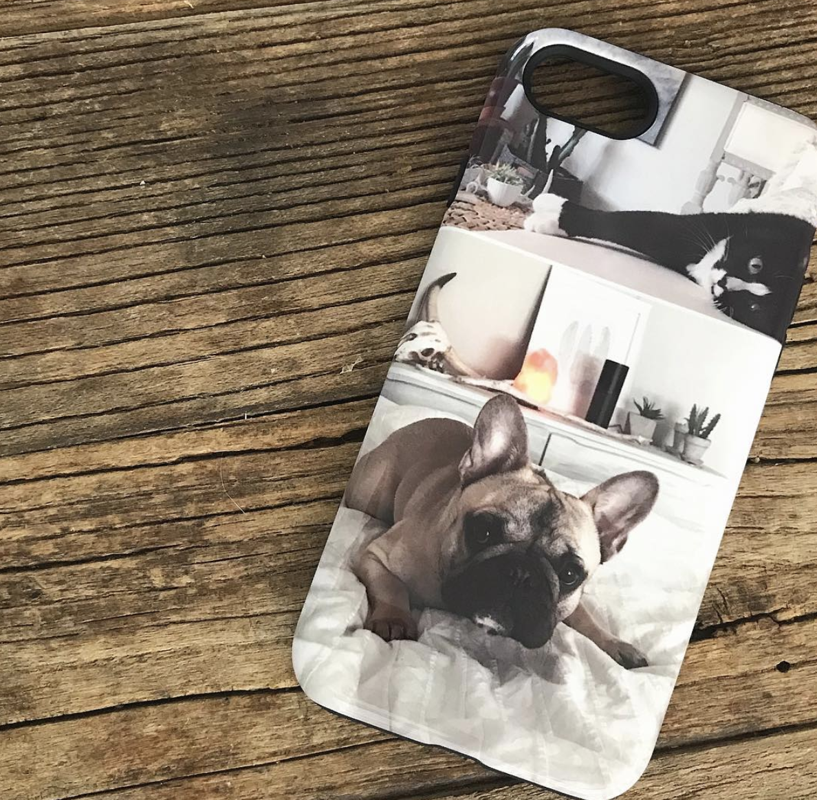 Phone case with photo of french bulldog and black cat